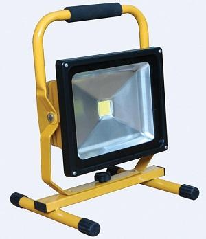 CONNEXIONS 10916 LED Site Light 110v